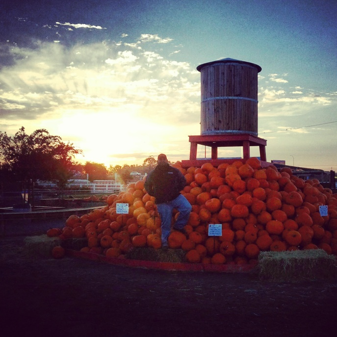 Ray Lopez at Dell'Osso Farms in Lathrop
