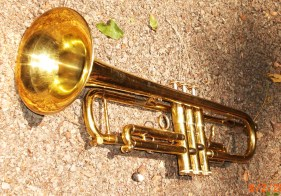 Gold Lacquer - Amazing Horn
