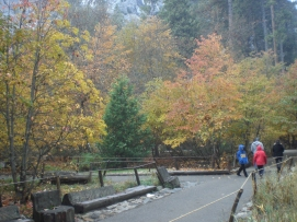 November in the Valley