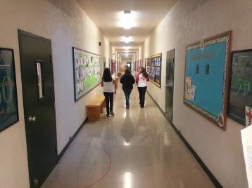 The Halls!